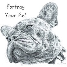 Portray Your Pet advert